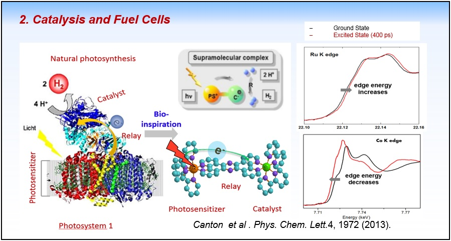 Catalysis and Fuel Cells