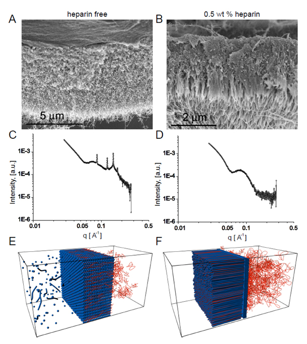 Self-Assembly of Layered Membranes