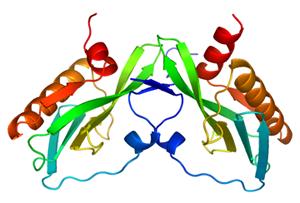 A Bird Flu Protein Link to Virulence
