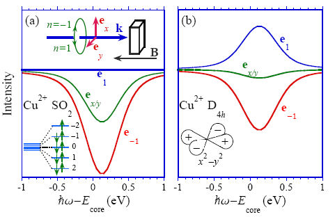 Prediction of strong dichroism induced by x-rays carrying orbital momentum