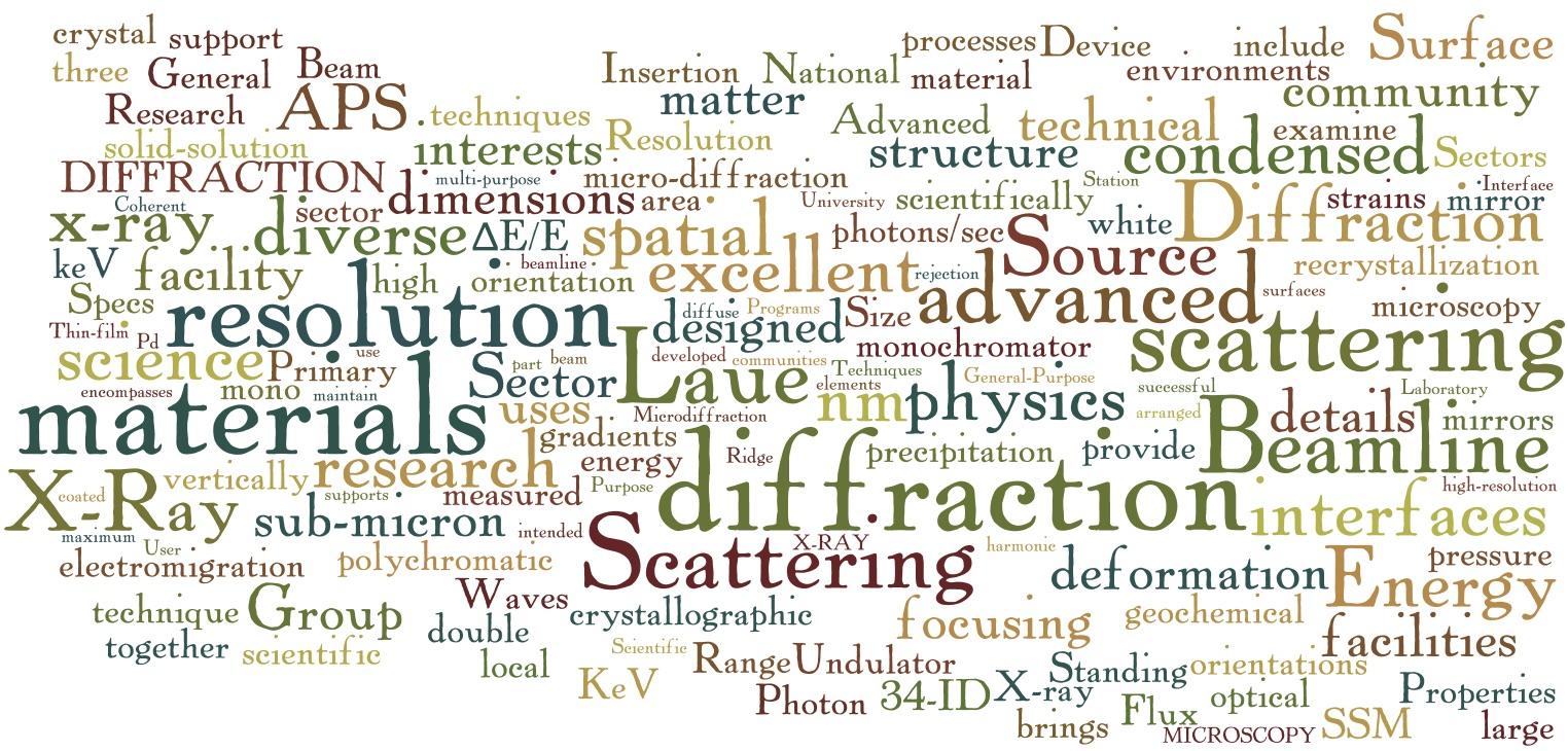 SSM X-ray Wordle