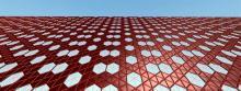 Palladium-alloyed nanocatalysts