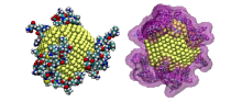 Peptide-enabled nanoparticles