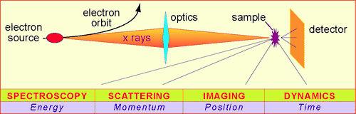 synchrotron radiation diagram